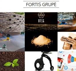 Tinklapių kūrimas FORTIS grupės įmonėms